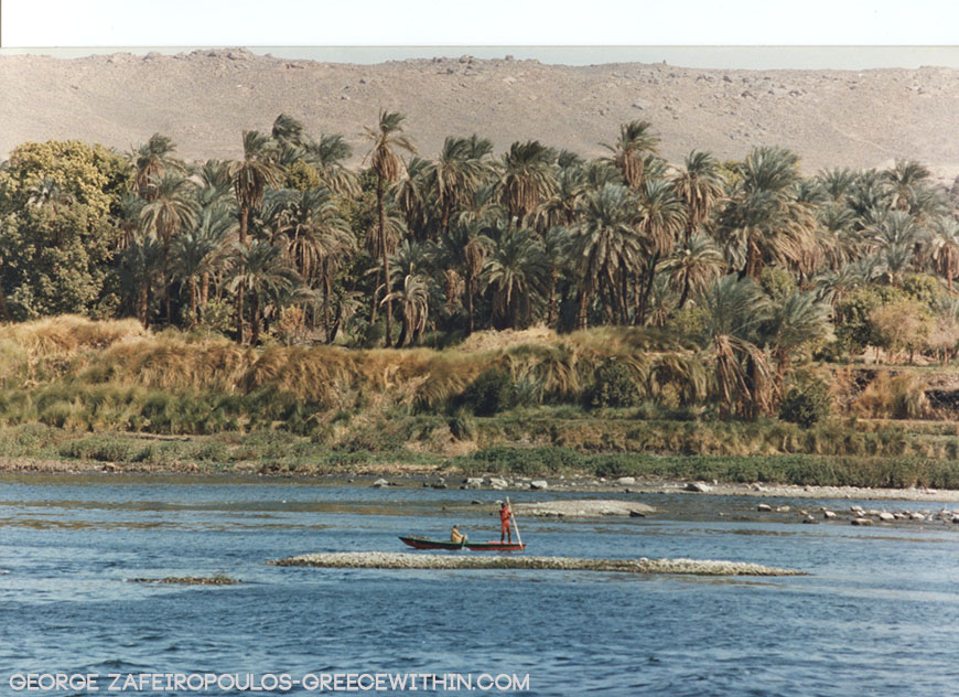 The Nile does not only give water for crops, but also fish.